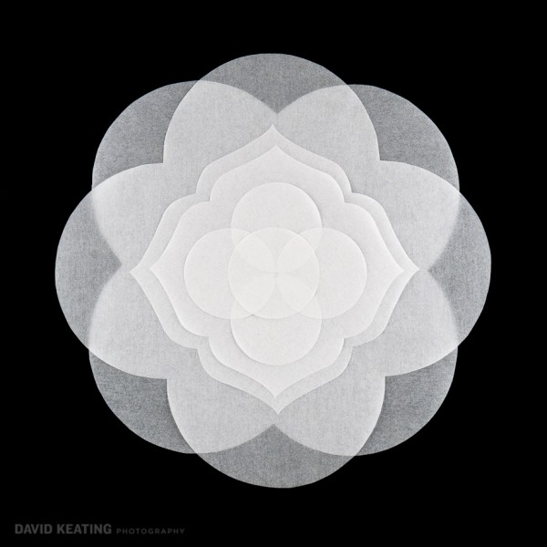 Denver Commercial Art Photography - Woven Life Sacred Geometry